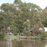 Camp Samatou bushland